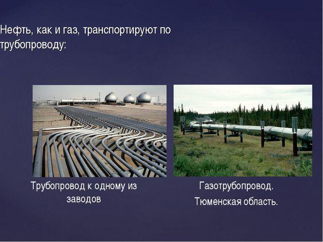Нефть, как и газ, транспортируют по трубопроводу: Трубопровод к одному из зав...