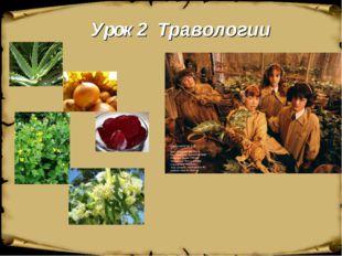 Урок 2 Травологии