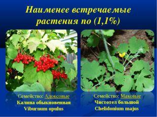 Наименее встречаемые растения по (1,1%) Семейство: Адоксовые Калина обыкнов