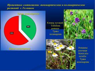 Травы монокарпики Травы поликарпики Процентное соотношение монокарпических и