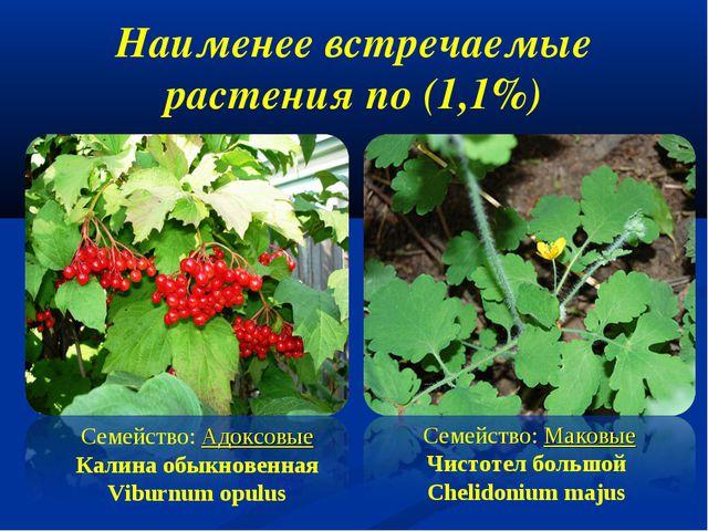 Наименее встречаемые растения по (1,1%) Семейство: Адоксовые Калина обыкнов...