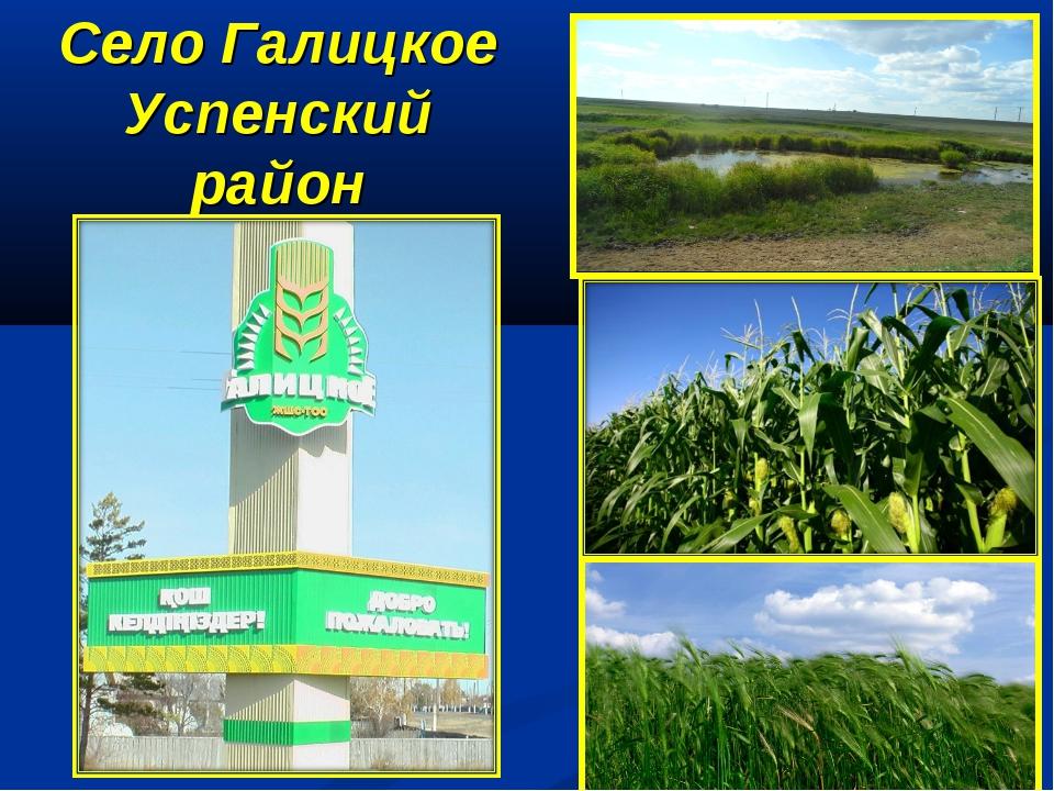 Село Галицкое Успенский район