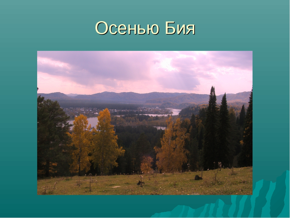 Осенью Бия