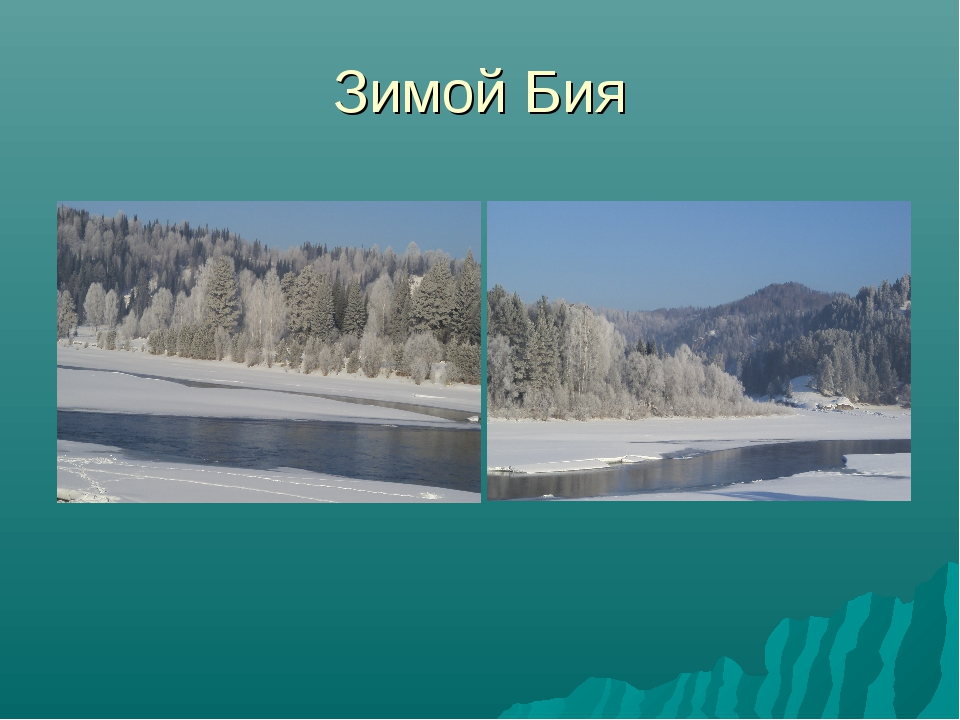 Зимой Бия