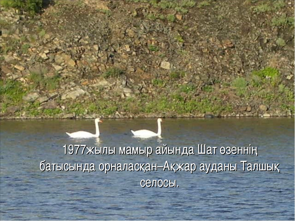 1977жылы мамыр айында Шат өзеннің батысында орналасқан–Ақжар ауданы Талшық с...