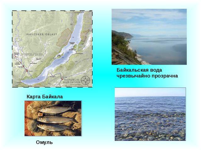 Карта Байкала Байкальская вода чрезвычайно прозрачна Омуль