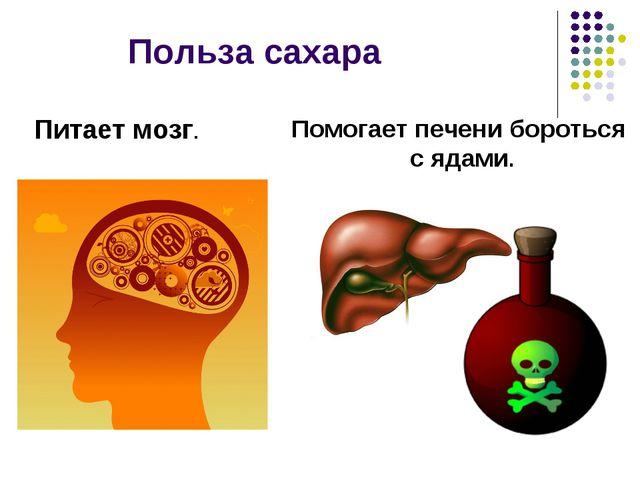 Польза сахара Питает мозг. Помогает печени бороться с ядами.