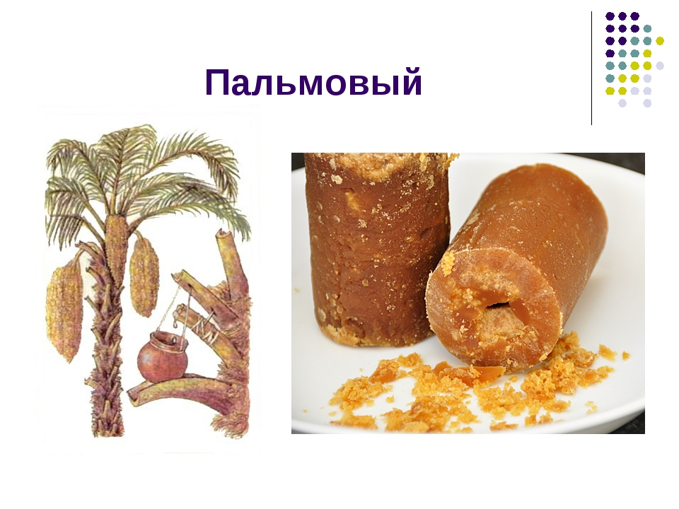Пальмовый
