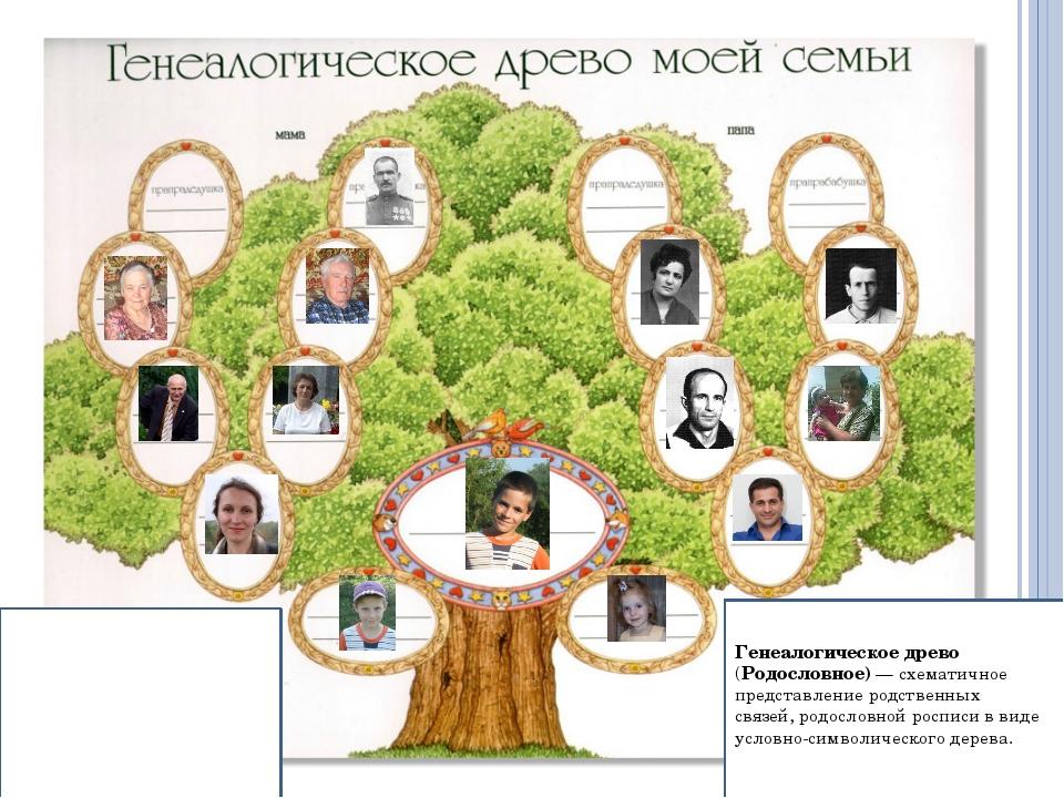 Генеалогическое древо (Родословное)— схематичное представлениеродственных...