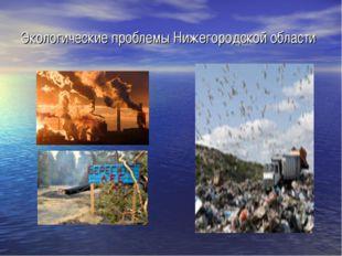 Экологические проблемы Нижегородской области