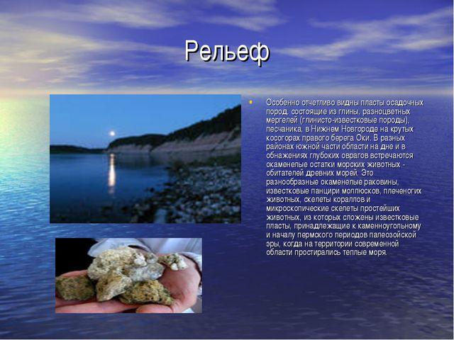 Рельеф Особенно отчетливо видны пласты осадочных пород, состоящие из глины, р...
