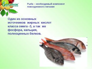 Рыба – необходимый компонент повседневного питания Один из основных источнико