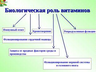 Биологическая роль витаминов Иммунный ответ Репродуктивная функция Кроветворе