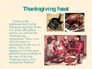 Thanksgiving feast Turkey is the traditional dish for the Thanksgiving feast.