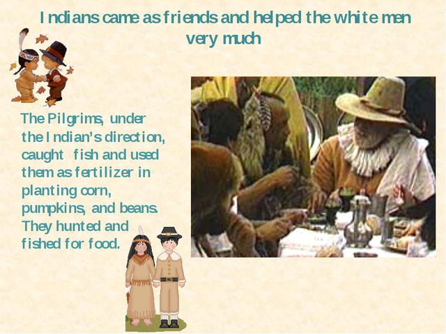 Indians camе as friends and helped the white men very much The Pilgrims, unde...