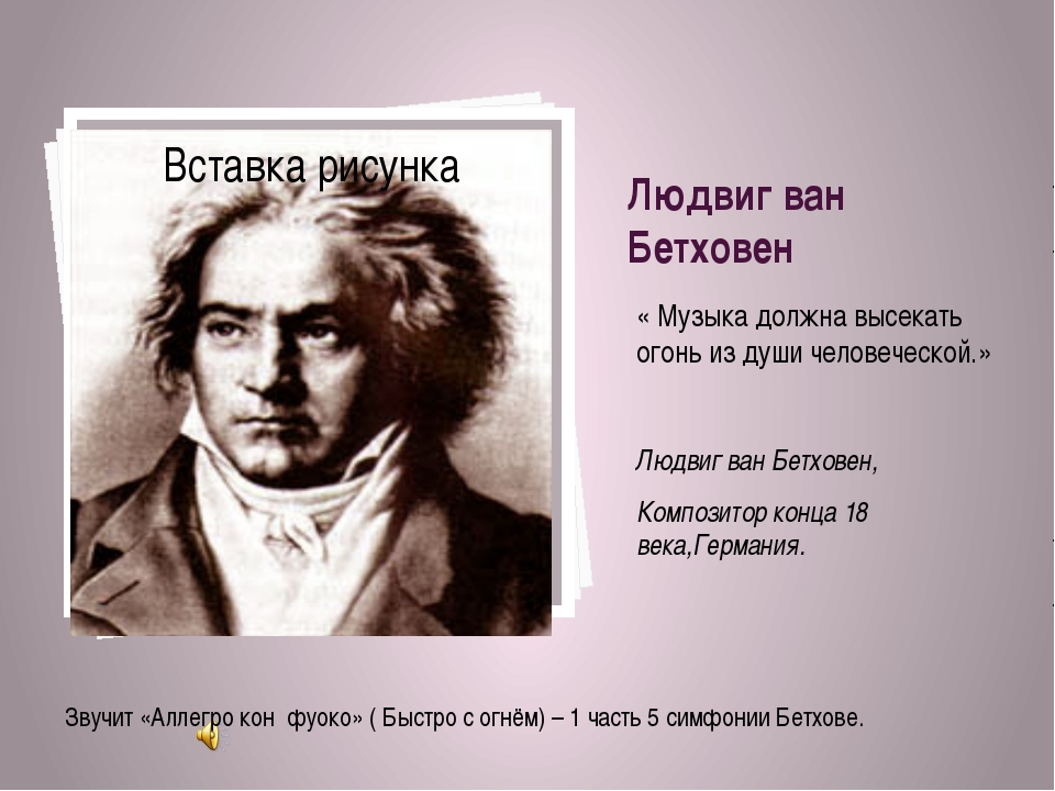 Людвиг ван Бетховен « Музыка должна высекать огонь из души человеческой.» Люд...