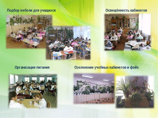 Подбор мебели для учащихся Освещённость кабинетов Озеленение учебных кабинето...