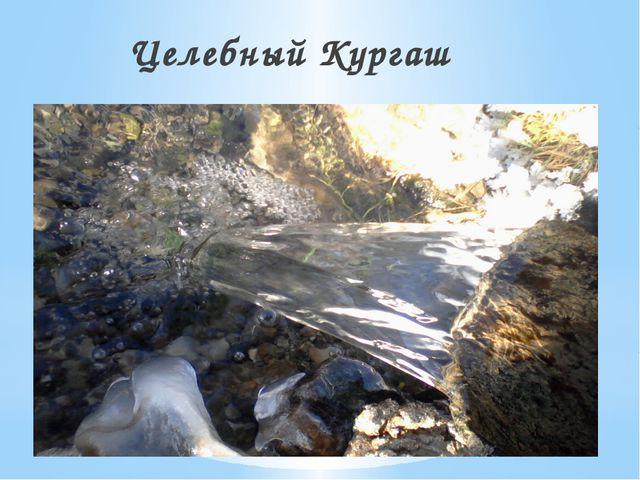 Целебная река Кургаш Целебный Кургаш