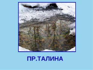 ПР.ТАЛИНА