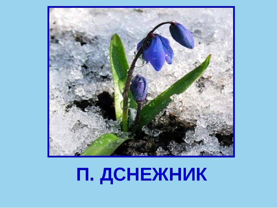 П. ДСНЕЖНИК