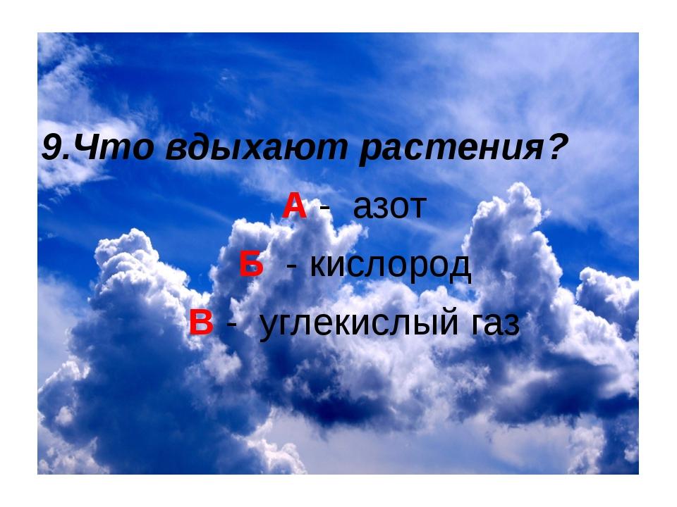 9.Что вдыхают растения? А - азот Б - кислород В - углекислый газ