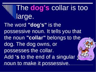 "The dog's collar is too large. The word ""dog's"" is the possessive noun. It te"