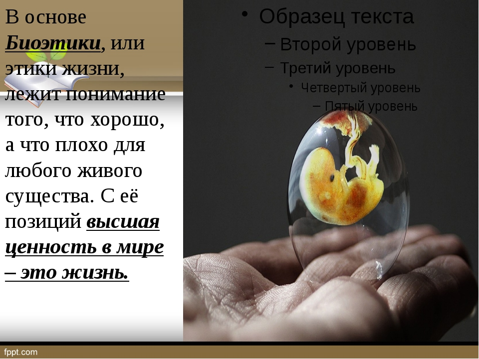 В основе Биоэтики, или этики жизни, лежит понимание того, что хорошо, а что...