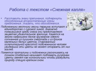 Работа с текстом «Снежная капля» Расставить знаки препинания, подчеркнуть обо