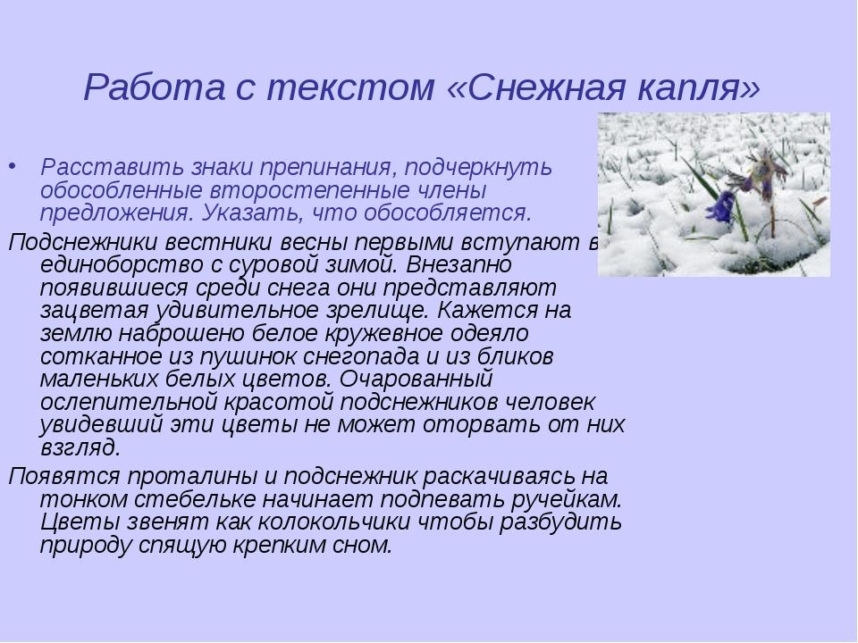 Работа с текстом «Снежная капля» Расставить знаки препинания, подчеркнуть обо...