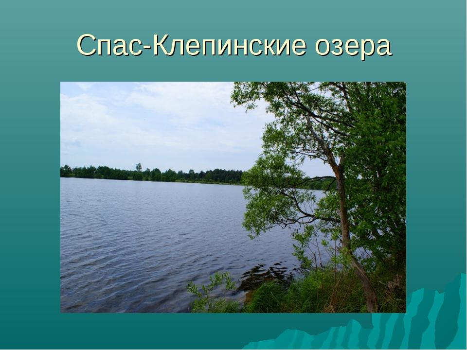Спас-Клепинские озера