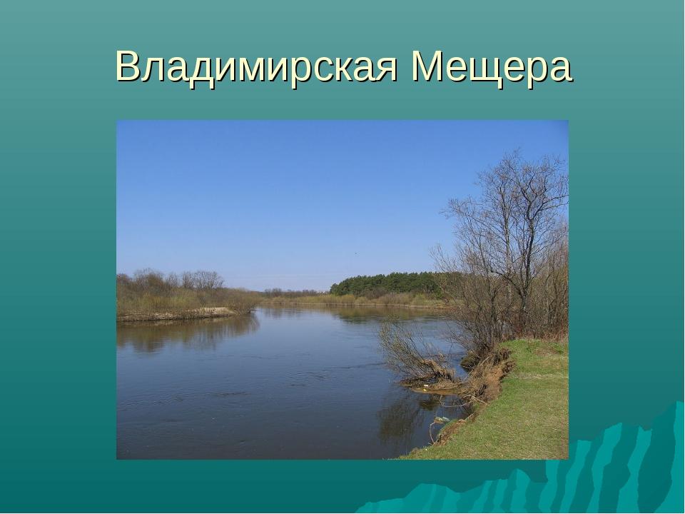 Владимирская Мещера