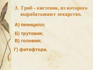 3. Гриб - кистевик, из которого вырабатывают лекарство. А) пеницилл; Б) труто
