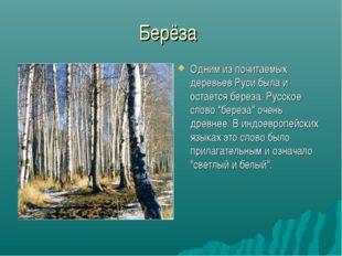 Берёза Одним из почитаемых деревьев Руси была и остается береза. Русское слов