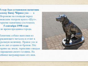 В 1998 году был установлен памятник Белому Биму Чёрное ухо — в Воронеже на пл
