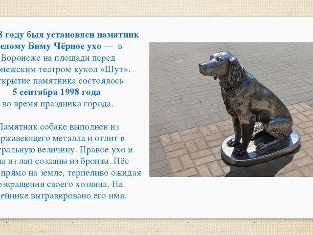 В 1998 году был установлен памятник Белому Биму Чёрное ухо — в Воронеже на пл...