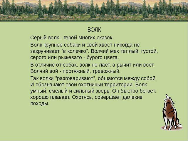 ВОЛК Серый волк - герой многих сказок. Волк крупнее собаки и свой хвост нико...