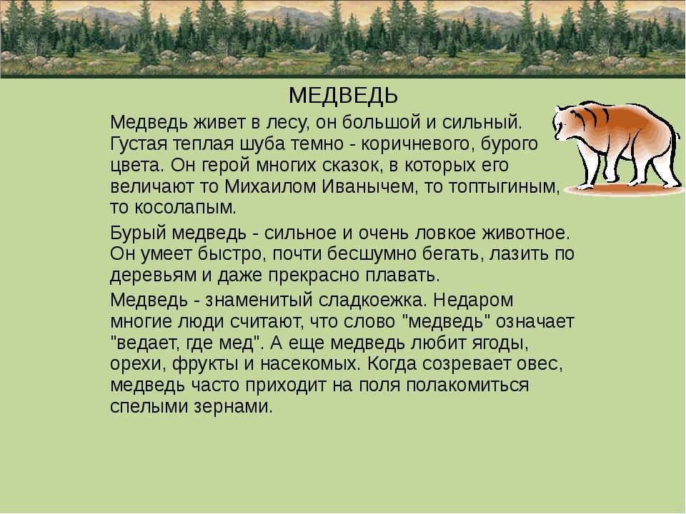 МЕДВЕДЬ Медведь живет в лесу, он большой и сильный. Густая теплая шуба темно...
