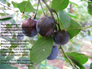 Жалоба деревьев Вкорзинах фрукты вносят вдом, Когда проходит лето, И оставл