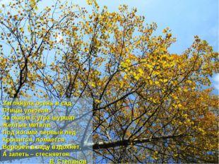 Заглянула осень в сад - Птицы улетели. За окном с утра шуршат Жёлтые метели.
