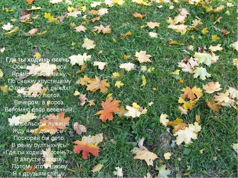 Где ты ходишь осень? Осенью дождливой Прямо сплю ивижу: Поснежку хрустящему...