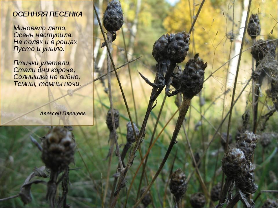 ОСЕННЯЯ ПЕСЕНКА Миновало лето, Осень наступила. На полях и в рощах Пусто и у...