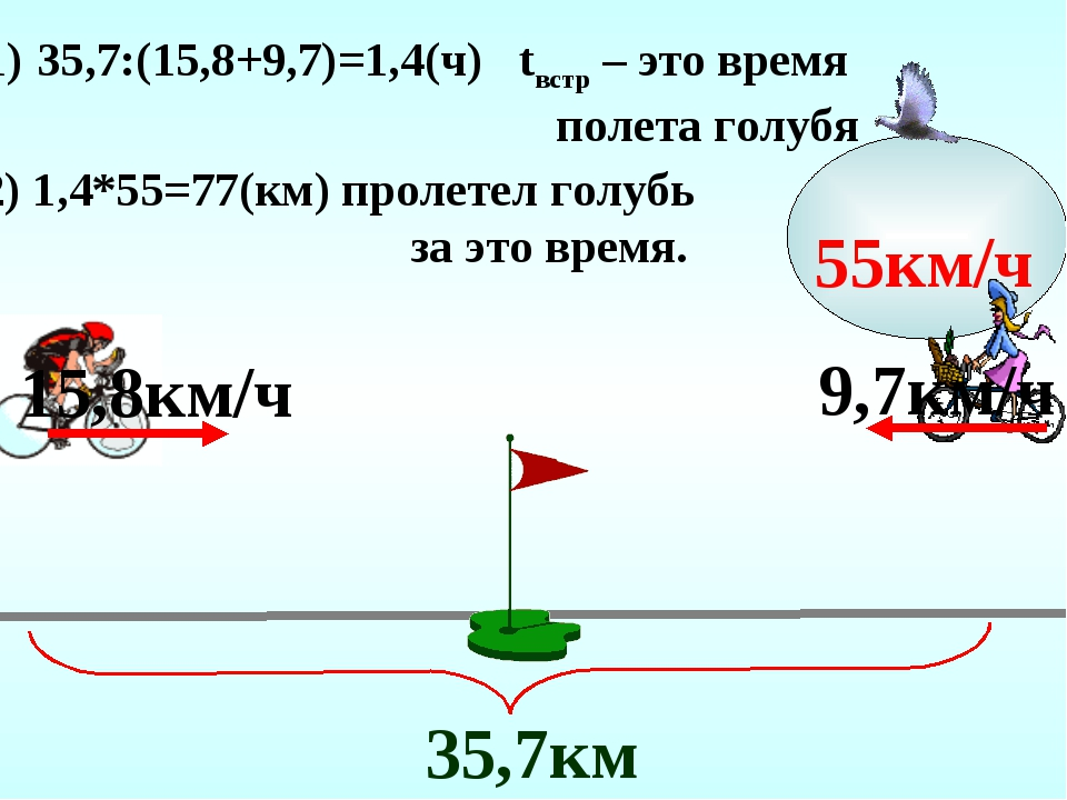 15,8км/ч 9,7км/ч 35,7:(15,8+9,7)=1,4(ч) tвстр – это время полета голубя 55км/...
