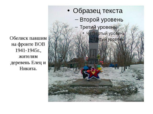 Обелиск павшим на фронте ВОВ 1941-1945г., жителям деревень Елец и Никита.