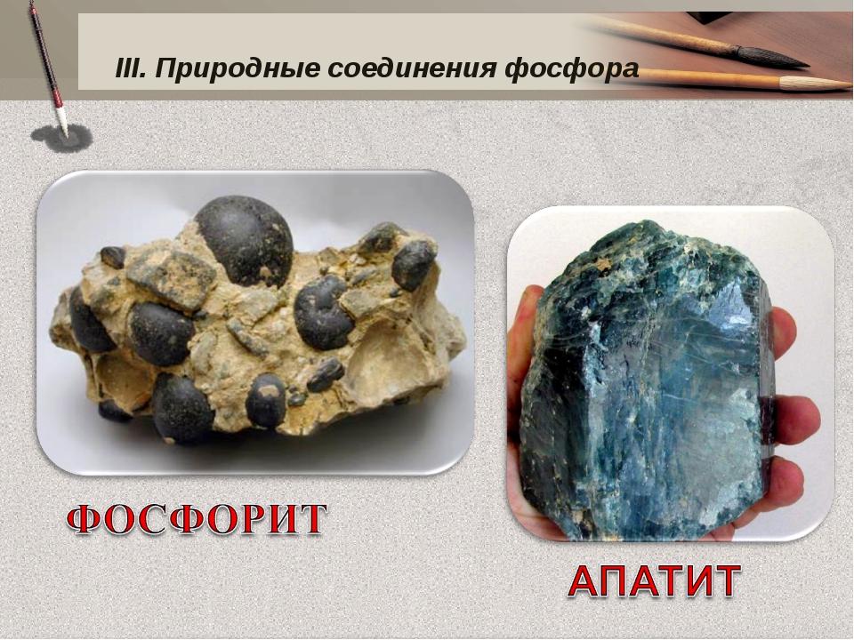 III. Природные соединения фосфора