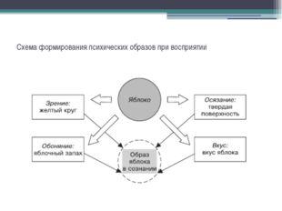 Схема формирования психических образов при восприятии