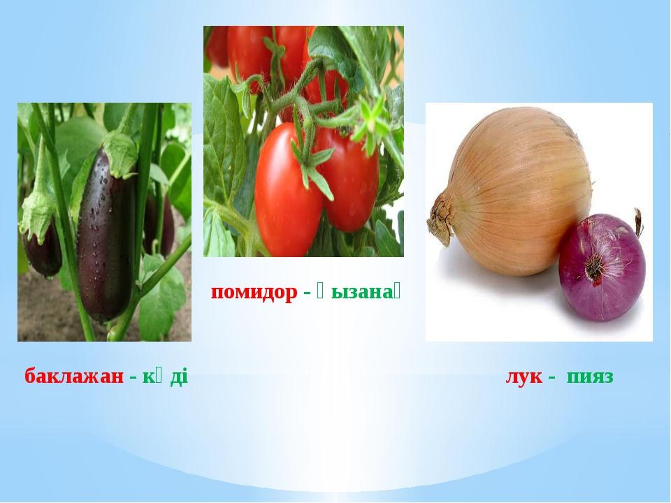 баклажан - кәді помидор - қызанақ лук - пияз