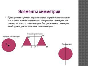 Элементы симметрии При изучении строения в сравнительной морфологии использую