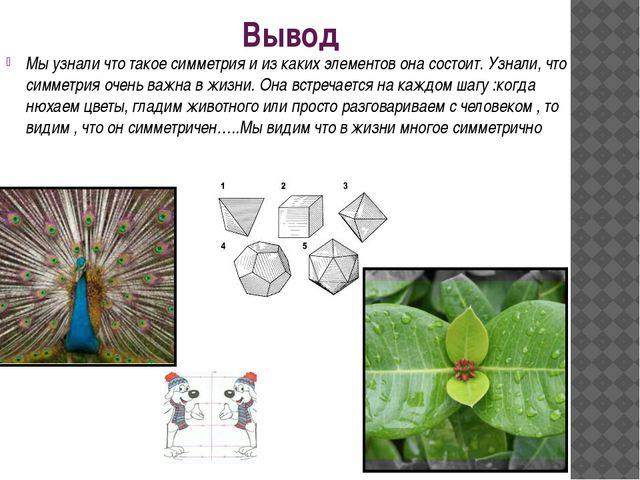 Вывод Мы узнали что такое симметрия и из каких элементов она состоит. Узнали,...
