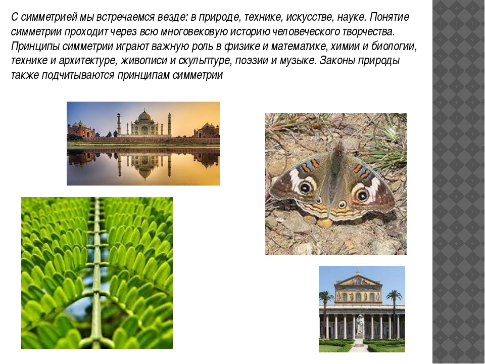 С симметрией мы встречаемся везде: в природе, технике, искусстве, науке. Поня...