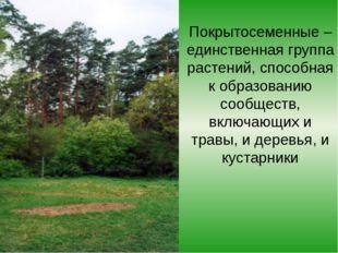 Покрытосеменные – единственная группа растений, способная к образованию сообщ